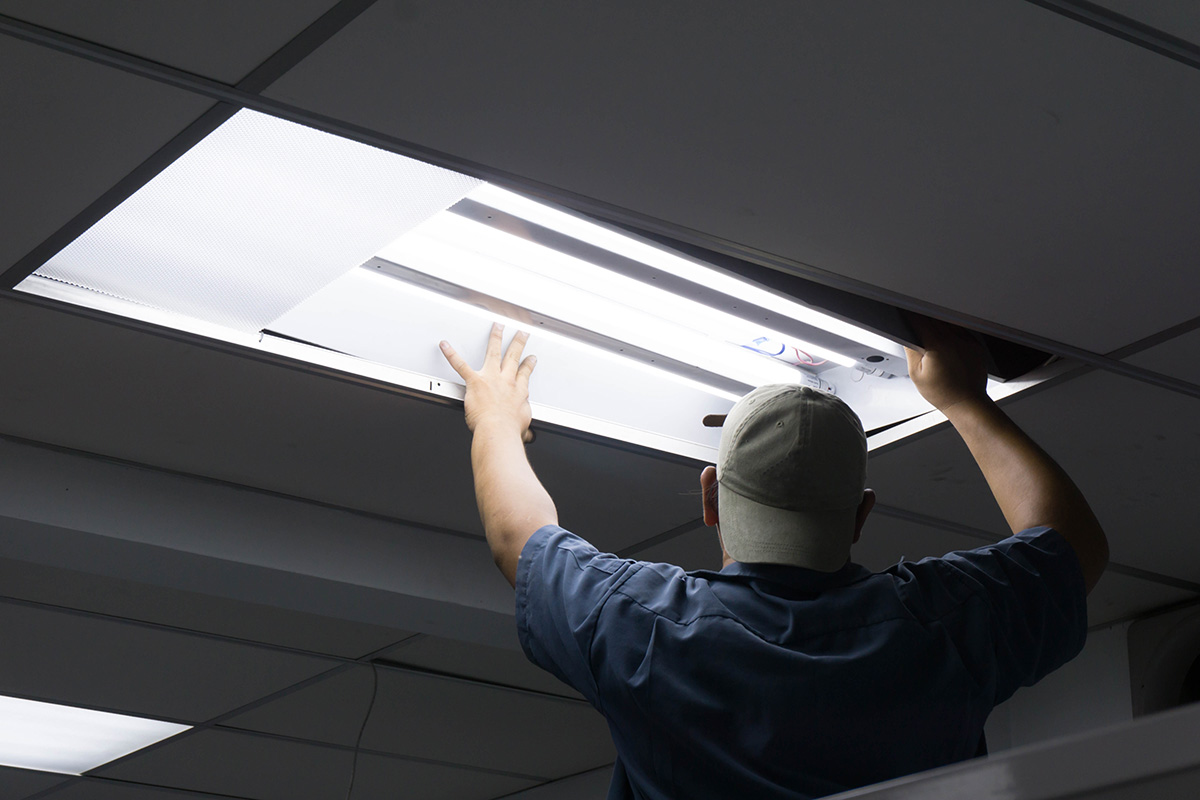 Speck Family Electric company installing office lighting