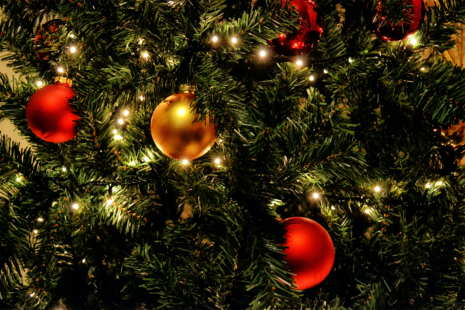 Close up of a Christmas tree with red and gold ornaments, taking into considerations tips about avoiding electrical hazards this holiday season.