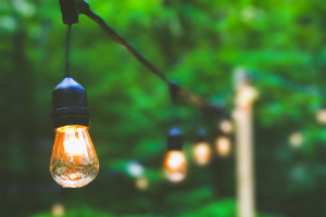 A string of lights hung up in a lush, green backyard.